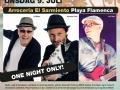Plakat for konsert i Torrevieja, Spania juli 2014